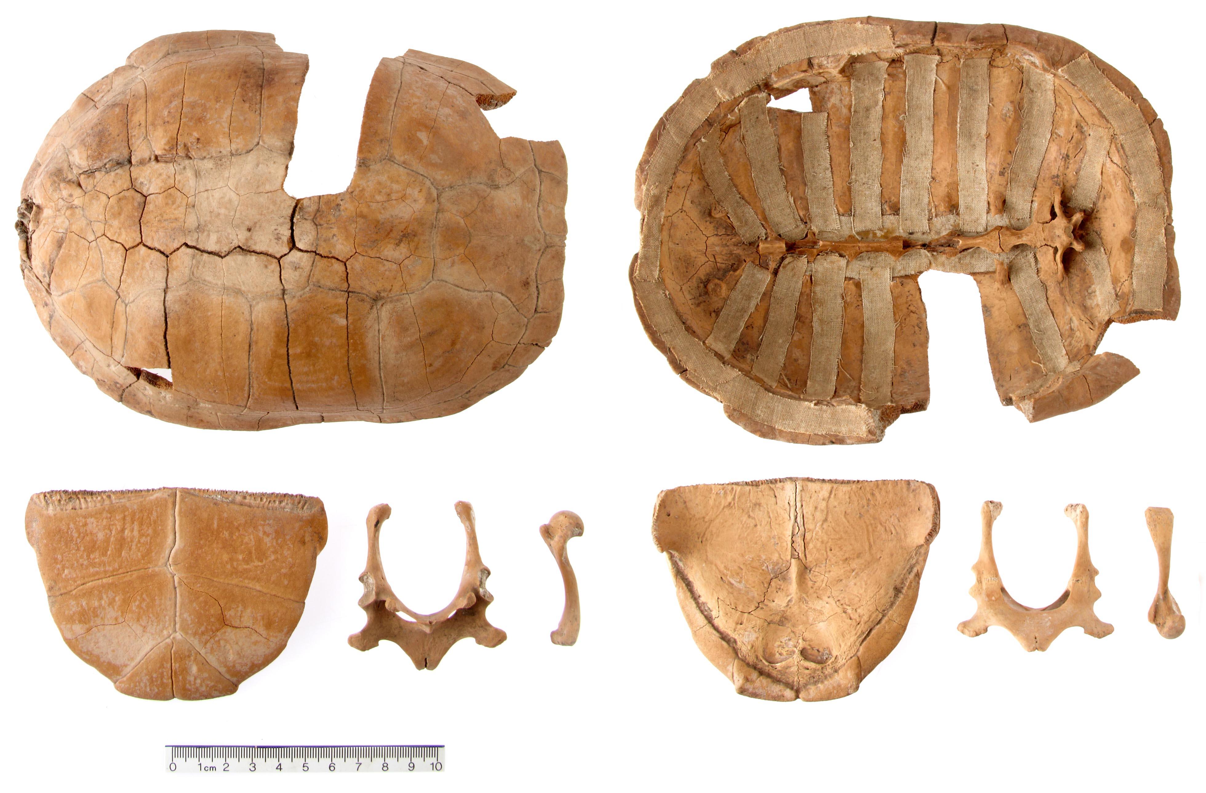 3d58f4996 Mogens Bo Henriksen | Arkæologi og forskning | Side 2